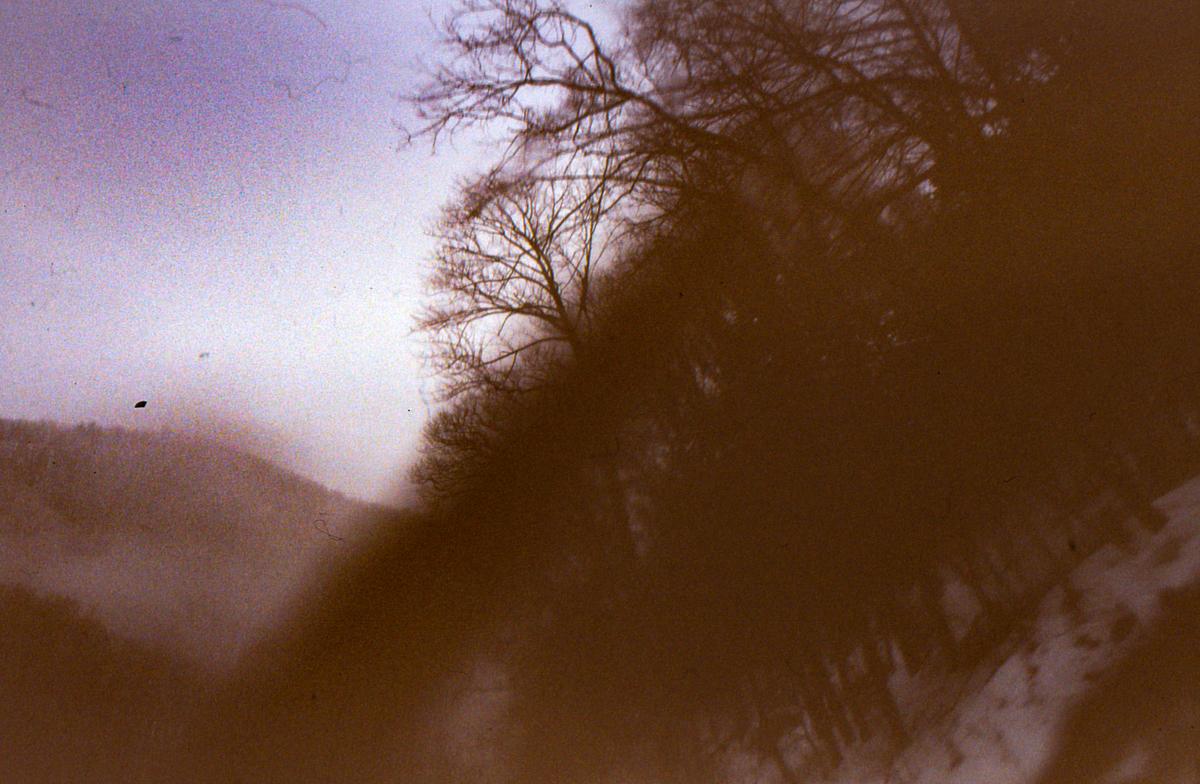 MatthewSchwab-Untitled-73.jpg
