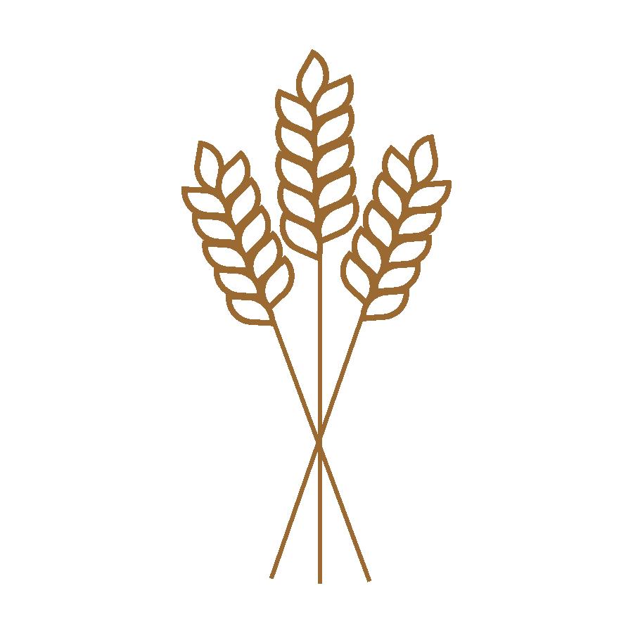 Wheat grass tithe image