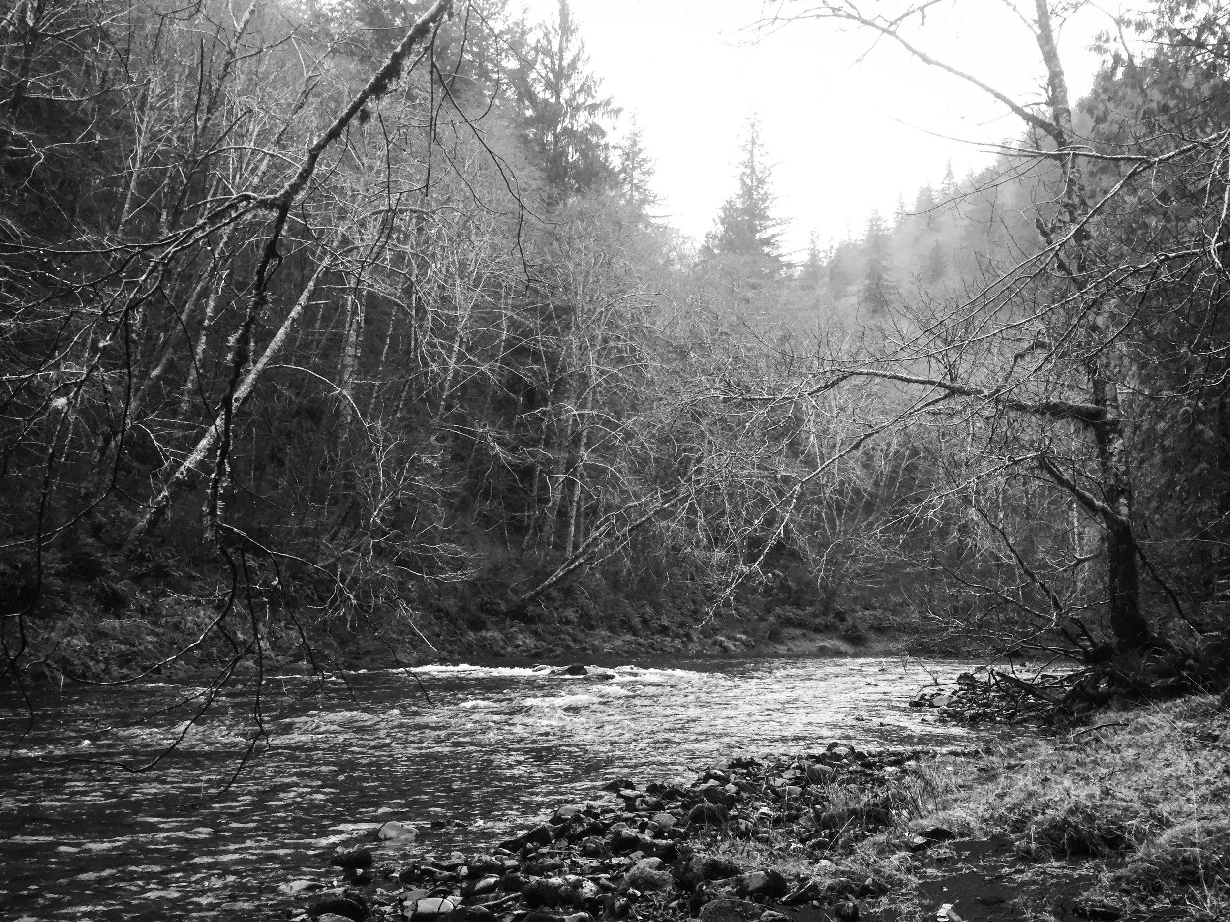 A coastal river in Oregon.