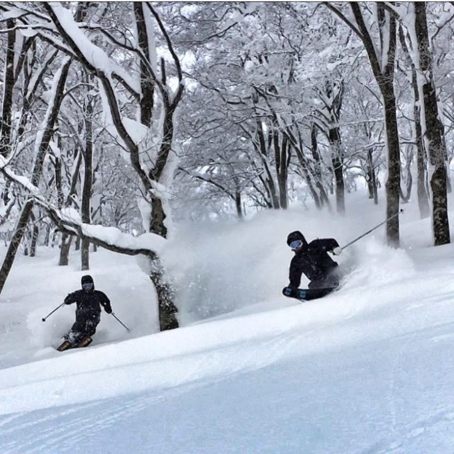 Japow!  #basehotelhakuba #skiing #freeskiing #japow #japanuary #ramen #sushi #backcountryskiing #hakuba #hakubavalley #powderskiing #yuki #snow #hakuba47 #shinkansen #airbnb #jumbochocomonaka #dalbello #armadaskis #japan #honshu