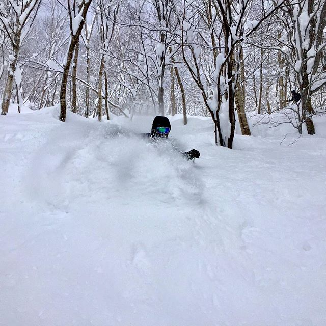Deep on Hokkaido! #basehotelhakuba #skiing #freeskiing #japow #japanuary #ramen #sushi #backcountryskiing #hakuba #hakubavalley #powderskiing #yuki #snow #hakuba47 #shinkansen #airbnb #jumbochocomonaka #dalbello #armadaskis #japan #honshu