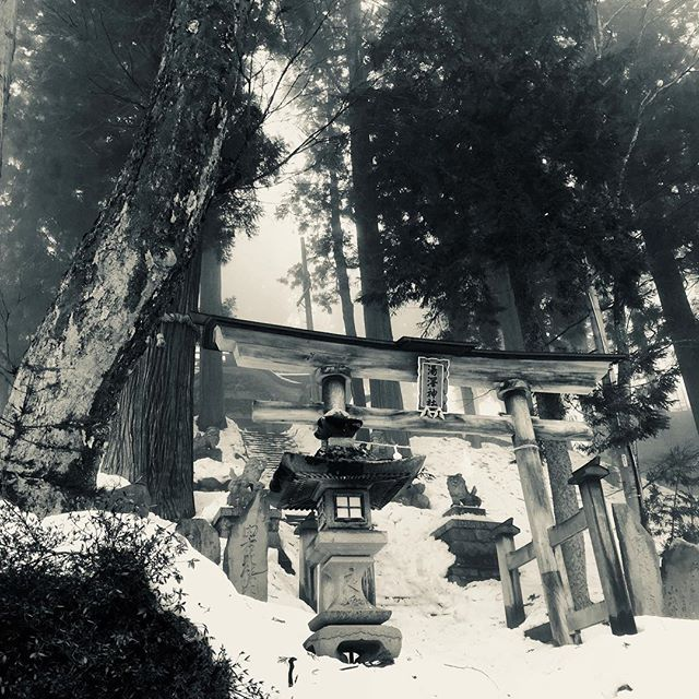 Beautiful temple in Nozawa Onsen. #basehotelhakuba #skiing #freeskiing #nozawaonsen #japow #japanuary #ramen #sushi #backcountryskiing #hakuba #hakubavalley #powderskiing #yuki #snow #hakuba47 #shinkansen #airbnb #jumbochocomonaka #dalbello #armadaskis #japan #honshu