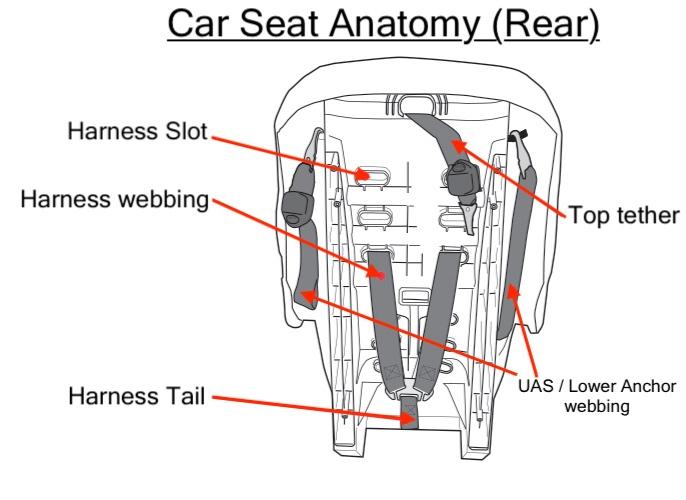 carseatanatomy.jpg