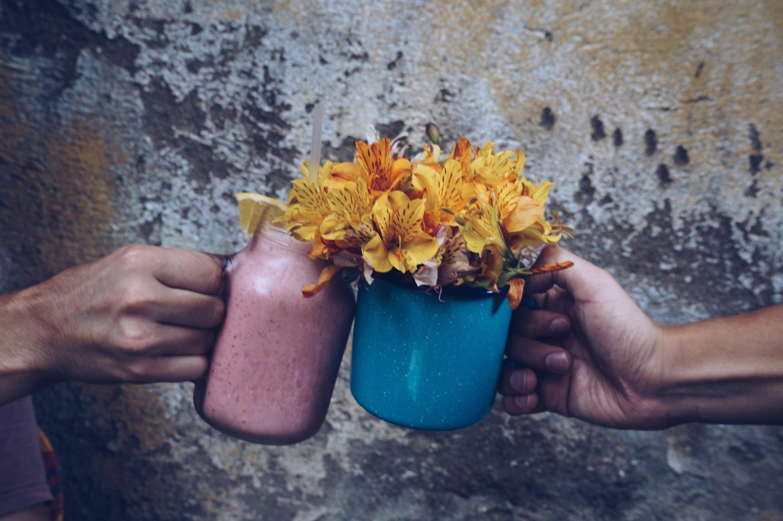uwm.immunesystem.hand-flower-food-spring-color-soil-59345-pxhere.com