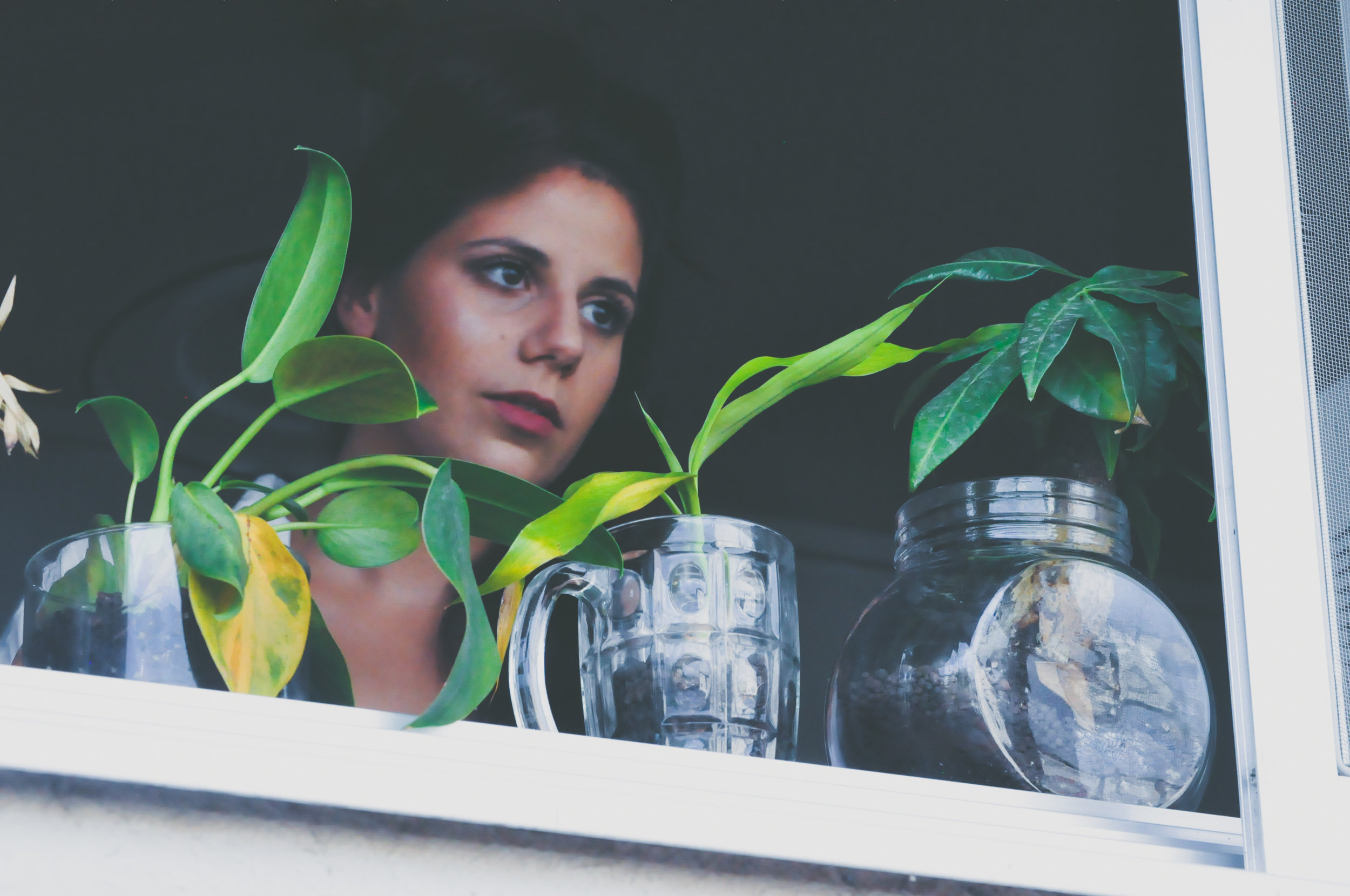 uwm.plants.person-woman-photography-house-window-model-1141949-pxhere.com