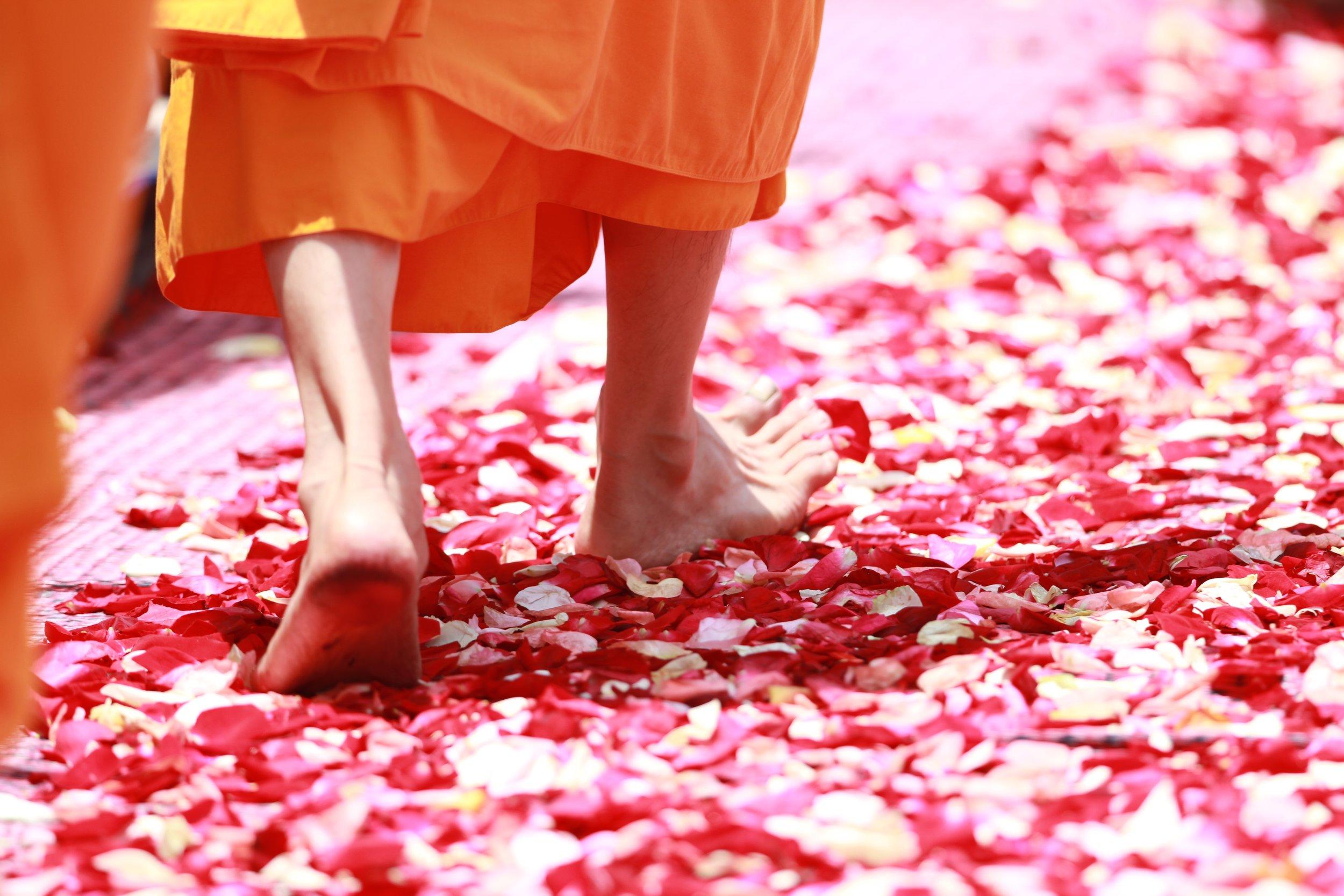 uwm.love.man-walking-people-play-flower-petal-1333633-pxhere.com