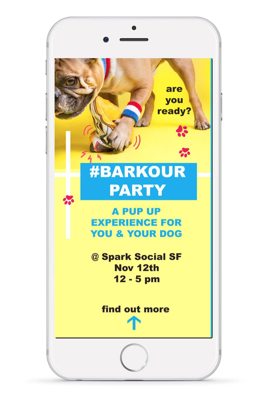 barkbox_7.jpg
