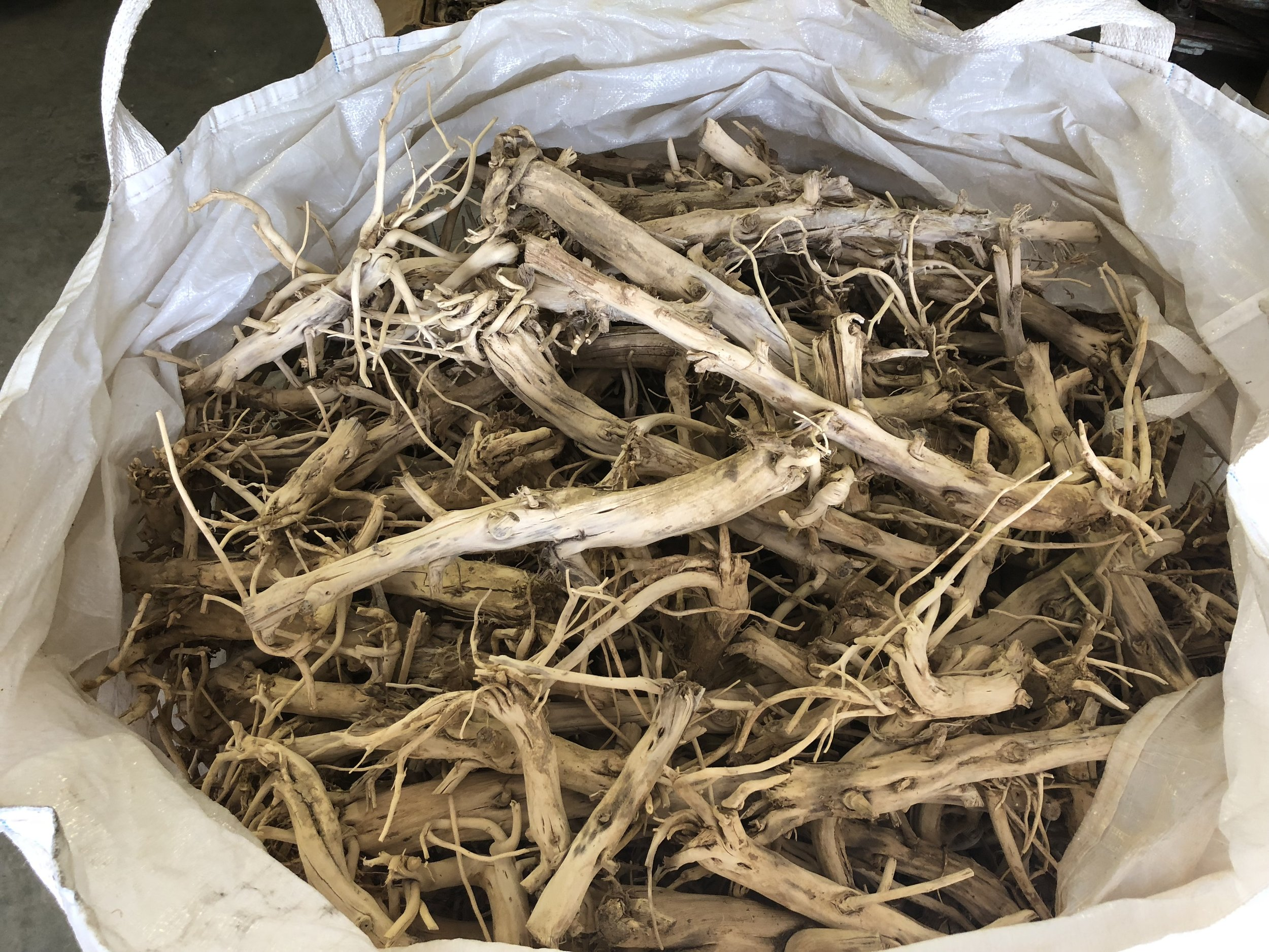 These roots will be utilized to formulate skin care products.