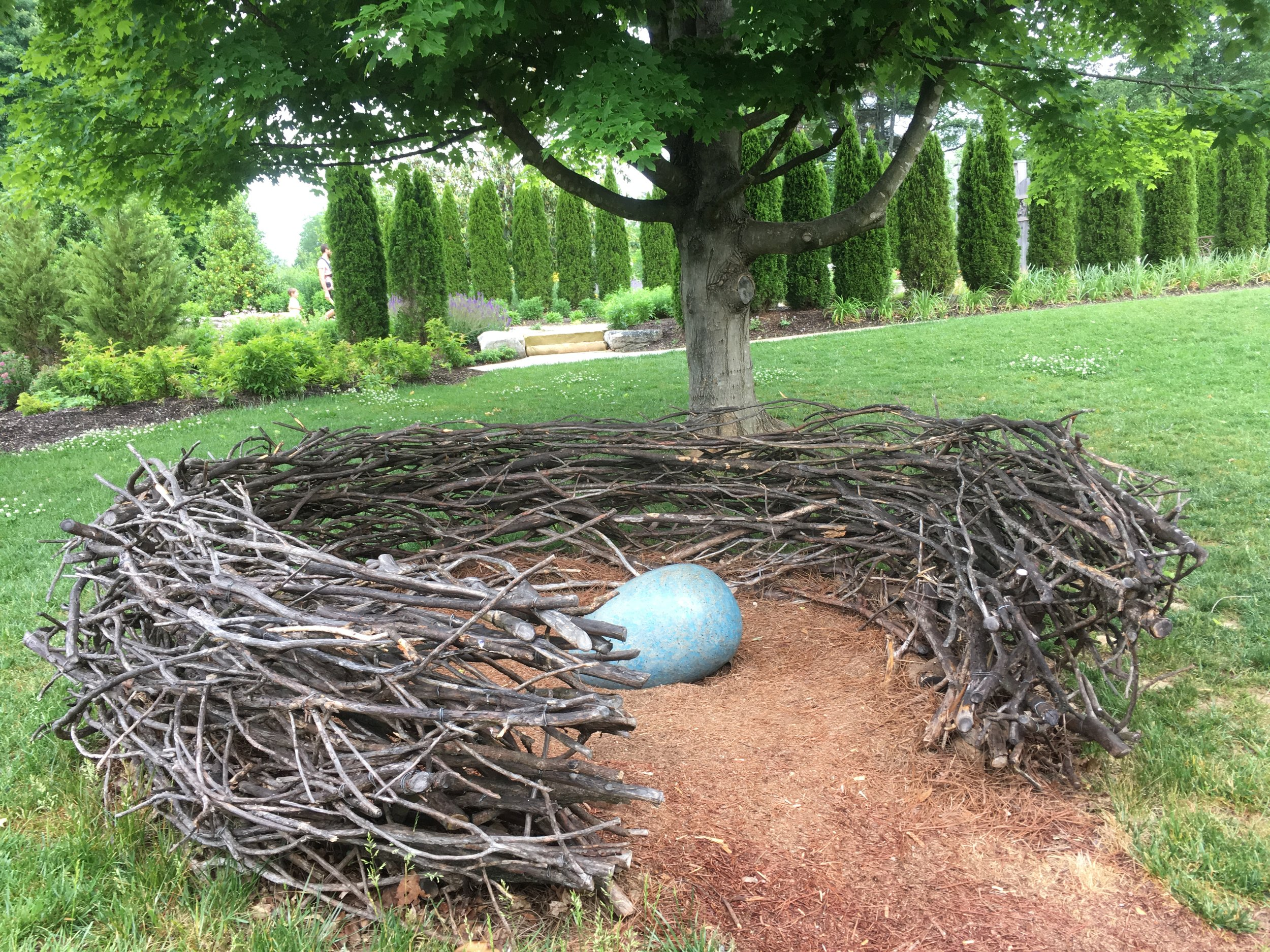 """The Nest""  Knoxville Botanical Gardens & Arboretum"