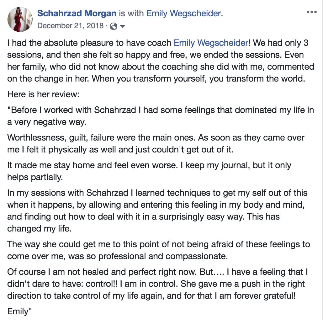 testimonial Emily Wegscheider Dec 2018.png