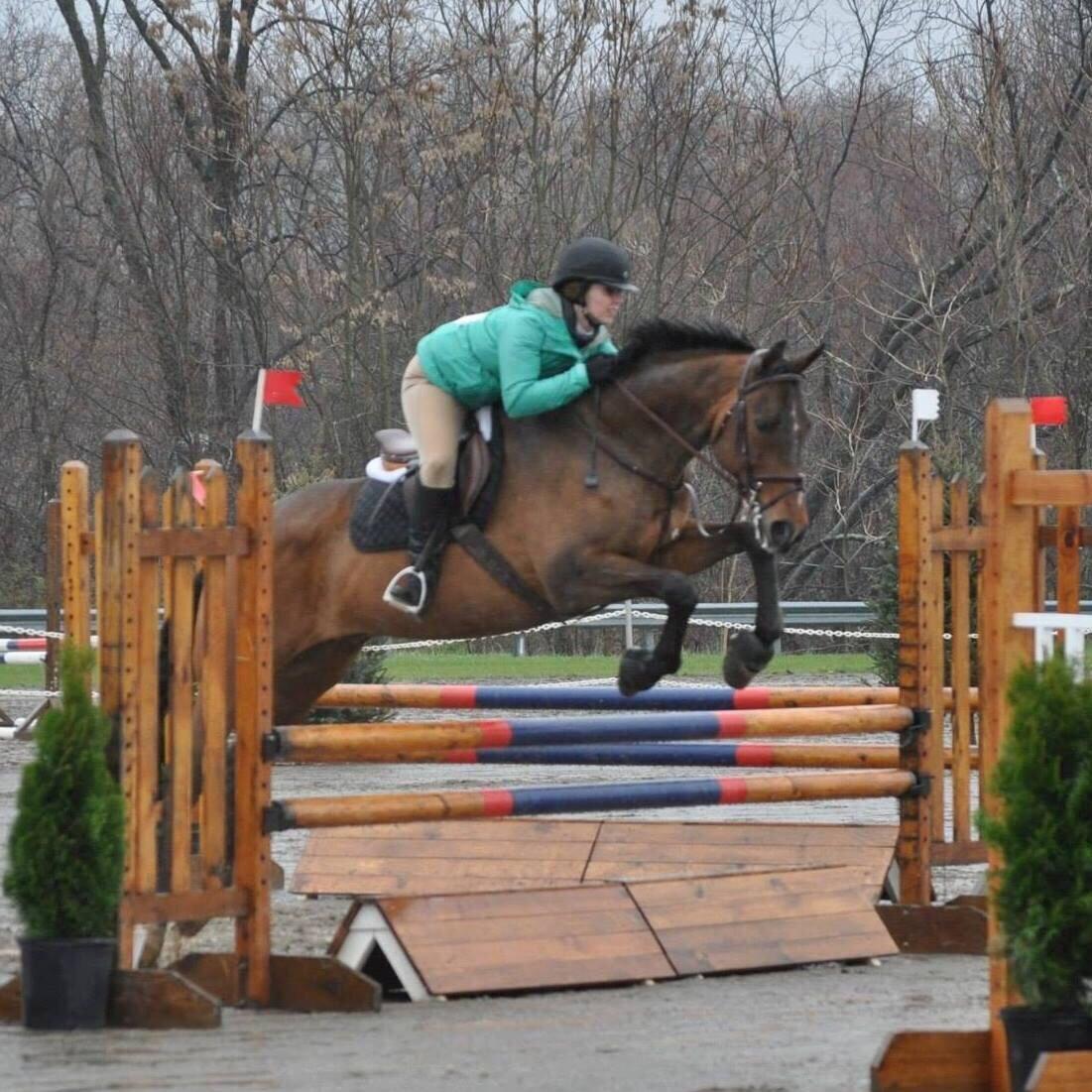 Garden State Horse Show 2013