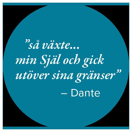 citat_cirkel.png