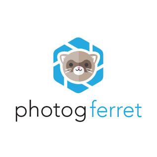 photogferret.jpg