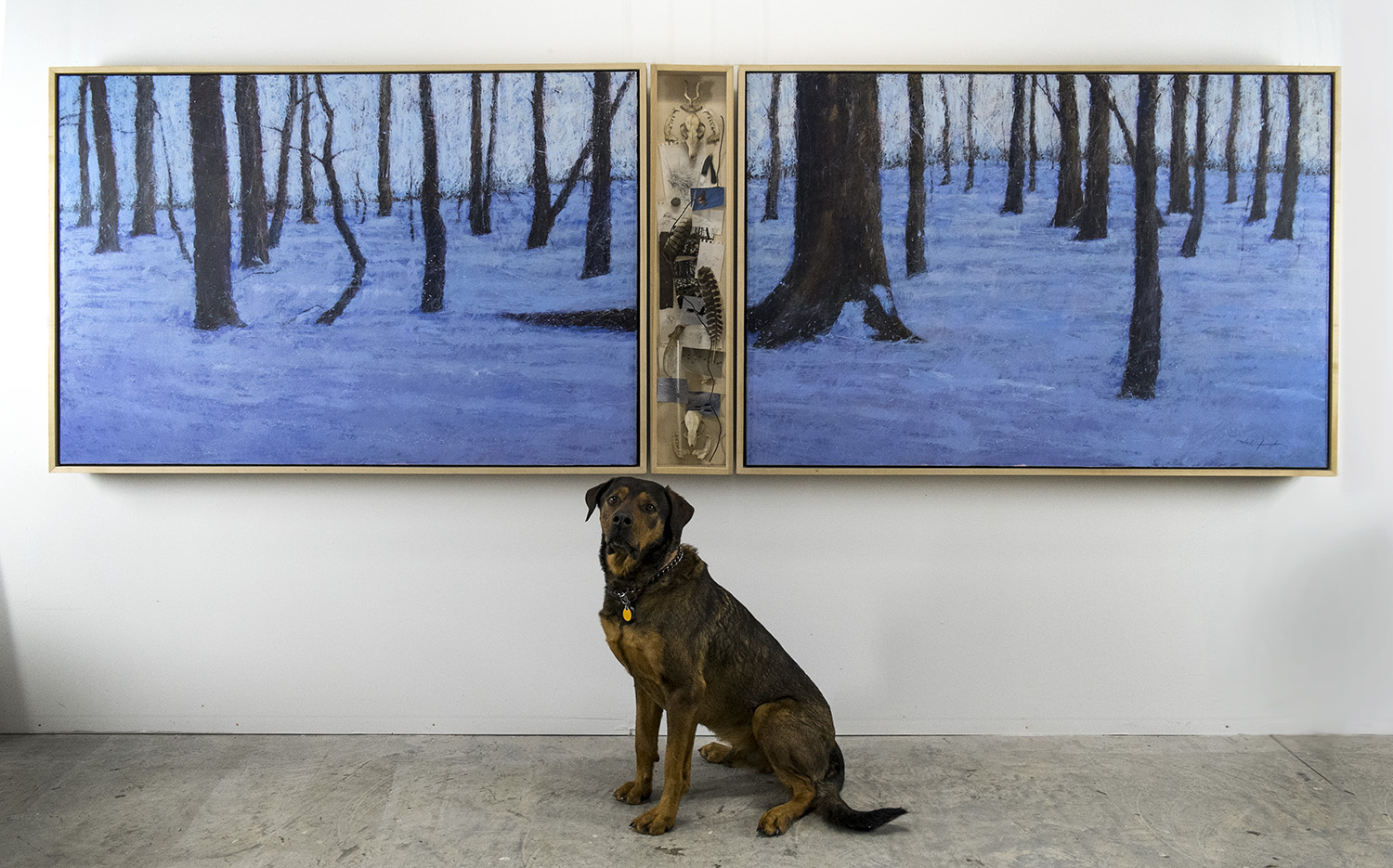 Trespass, 48 x 144 inches, pup not included. Oil on canvas with curio cabinet, and the Big Nugget. Available through the artist.