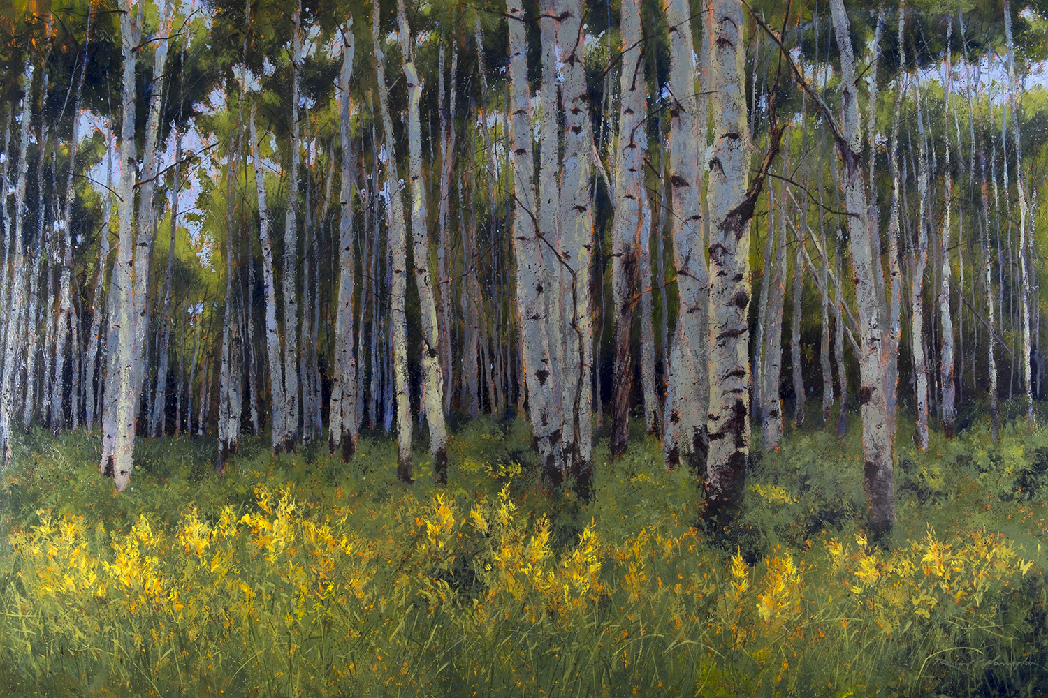 Aspen Along Kebler Pass, oil on canvas, 56 x 84 inches. Private collection.