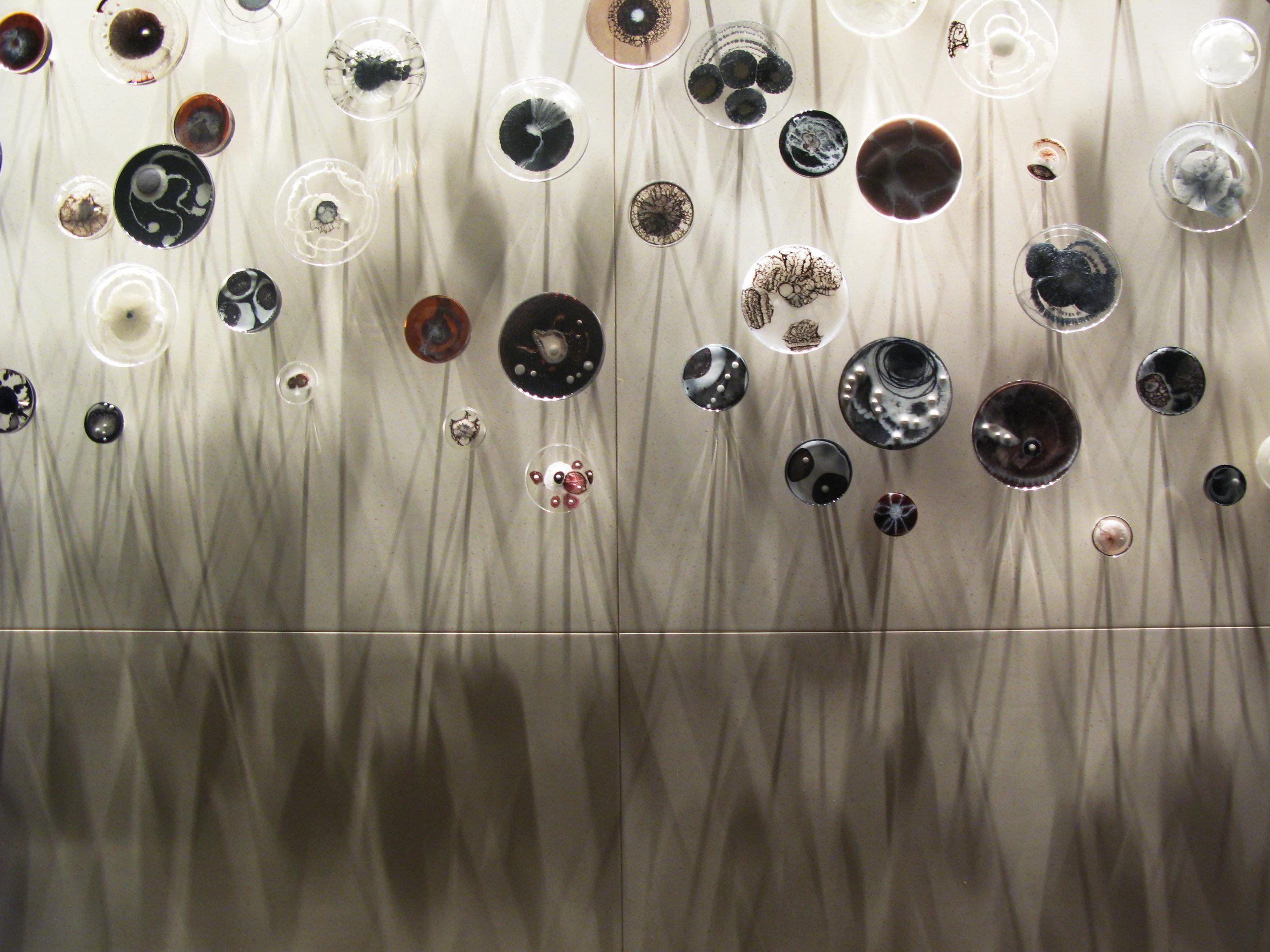 Amorphous petri dish Installation by Klari Reis.  Peninsula Shanghai Hotel. Detail image of neutral colored 150 piece installation.