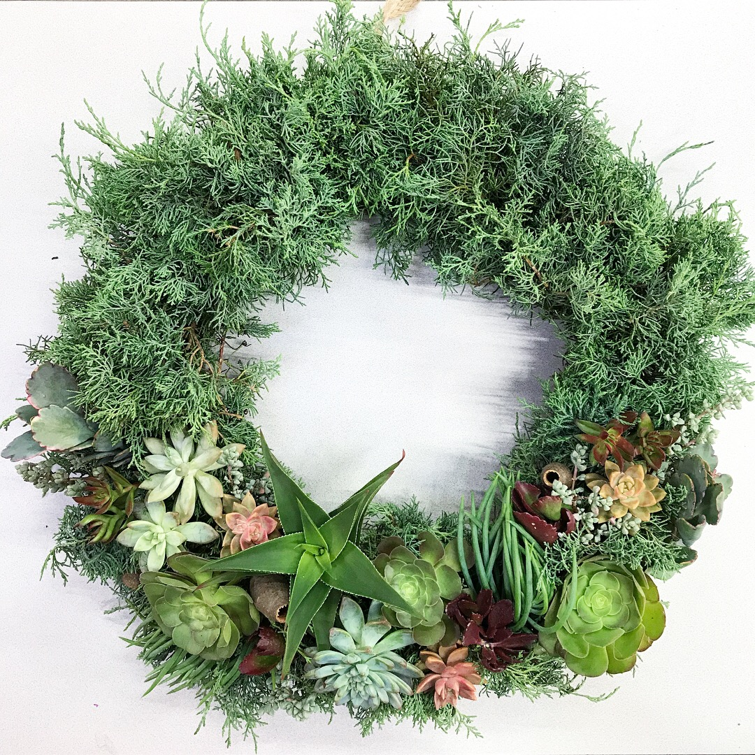 "12"" Juniper and Succulent Wreath"