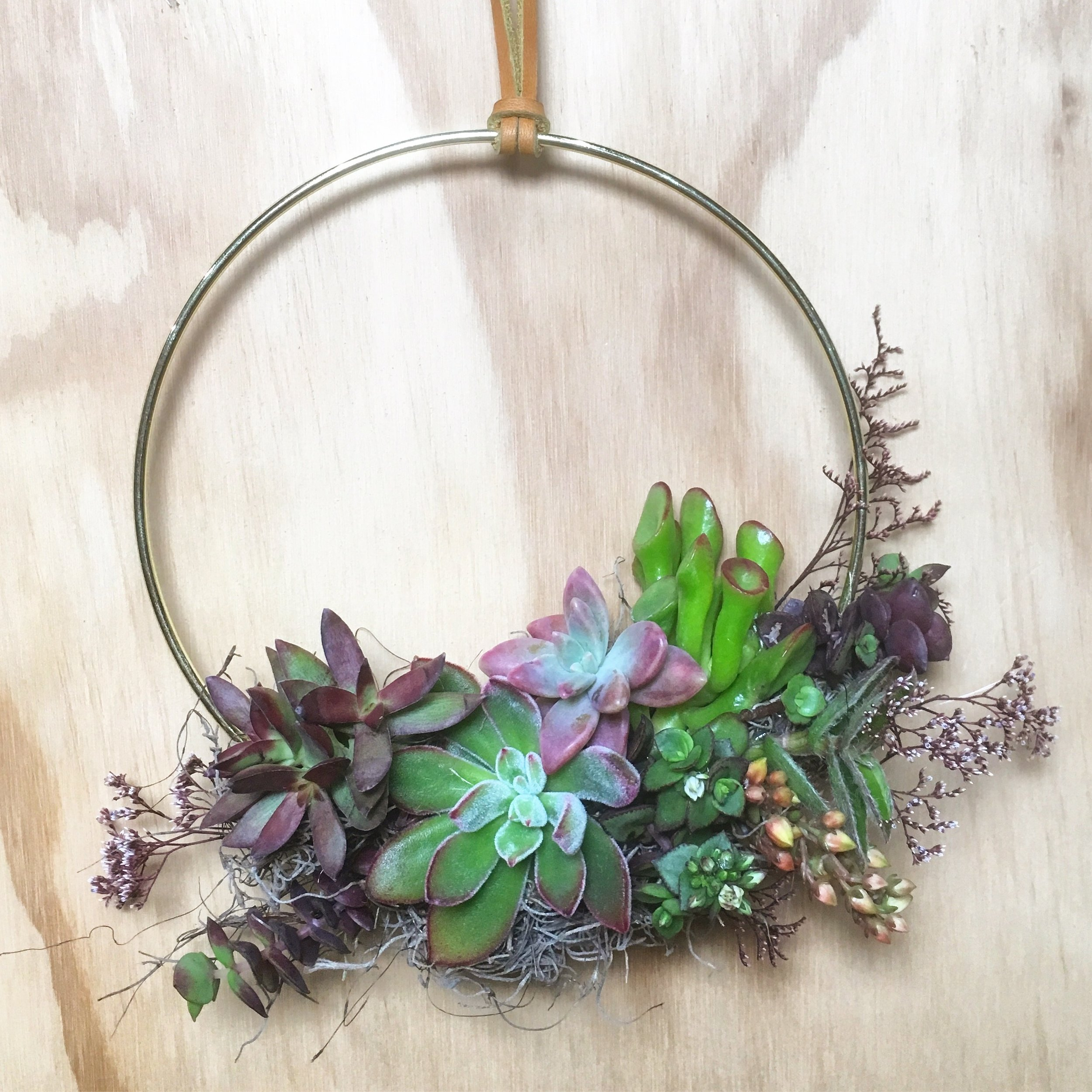 "5"" Gold Hoop Succulent Wreath"