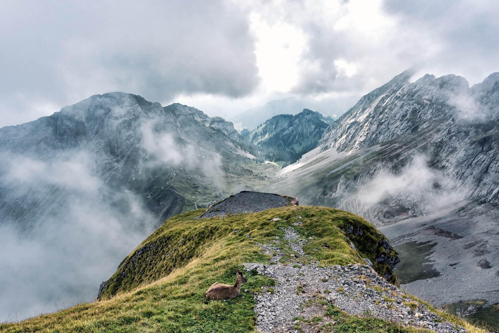 שוויץ - Mount Pilatus, Switzerland