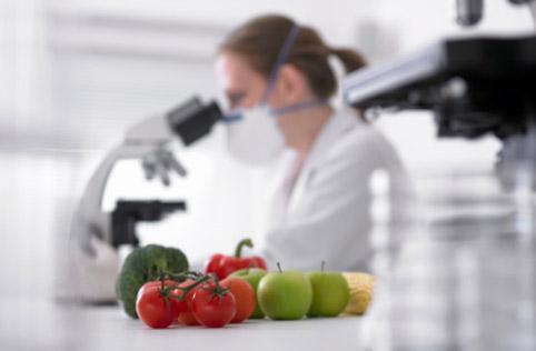 Исследование продовольственных товаров