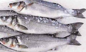 """О безопасности рыбы и рыбной продукции. Технический регламент Евразийского экономического союза """"О безопасности рыбы и рыбной продукции"""" (ТР ЕАЭС 040/2016)"""