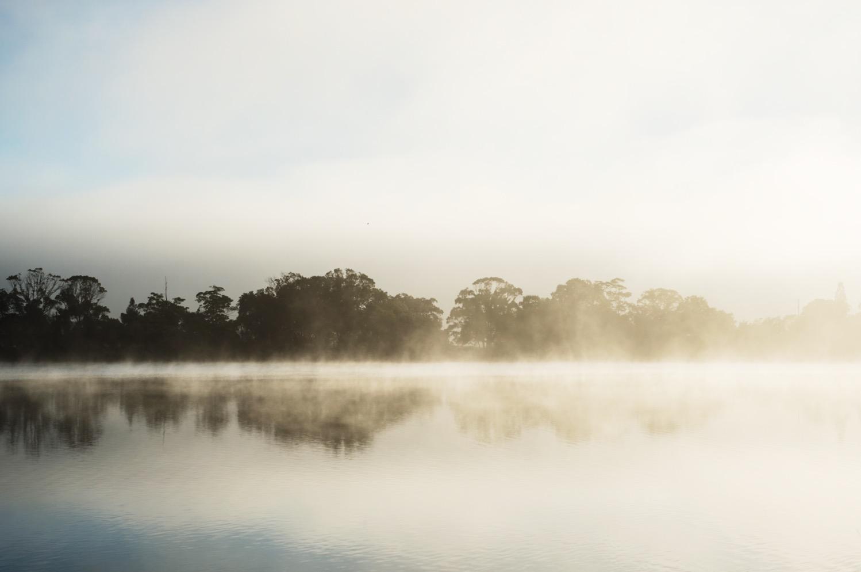 Murwillumbah fog