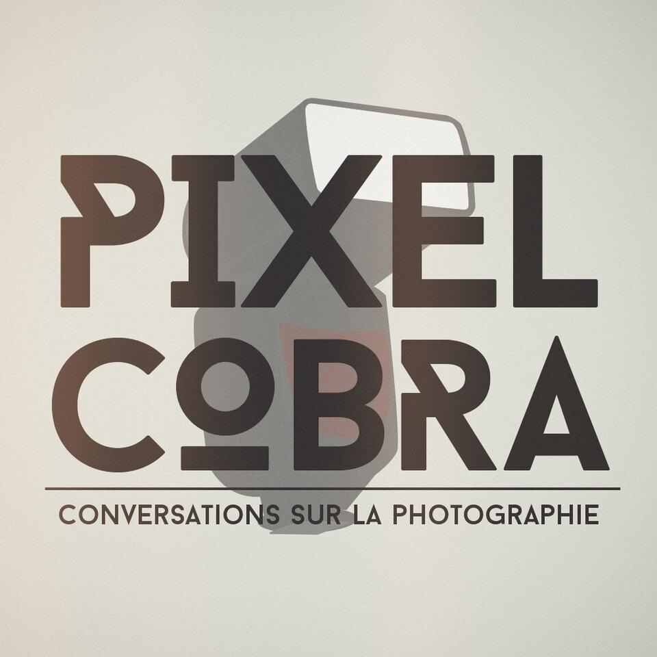 Pixel Logo.jpg