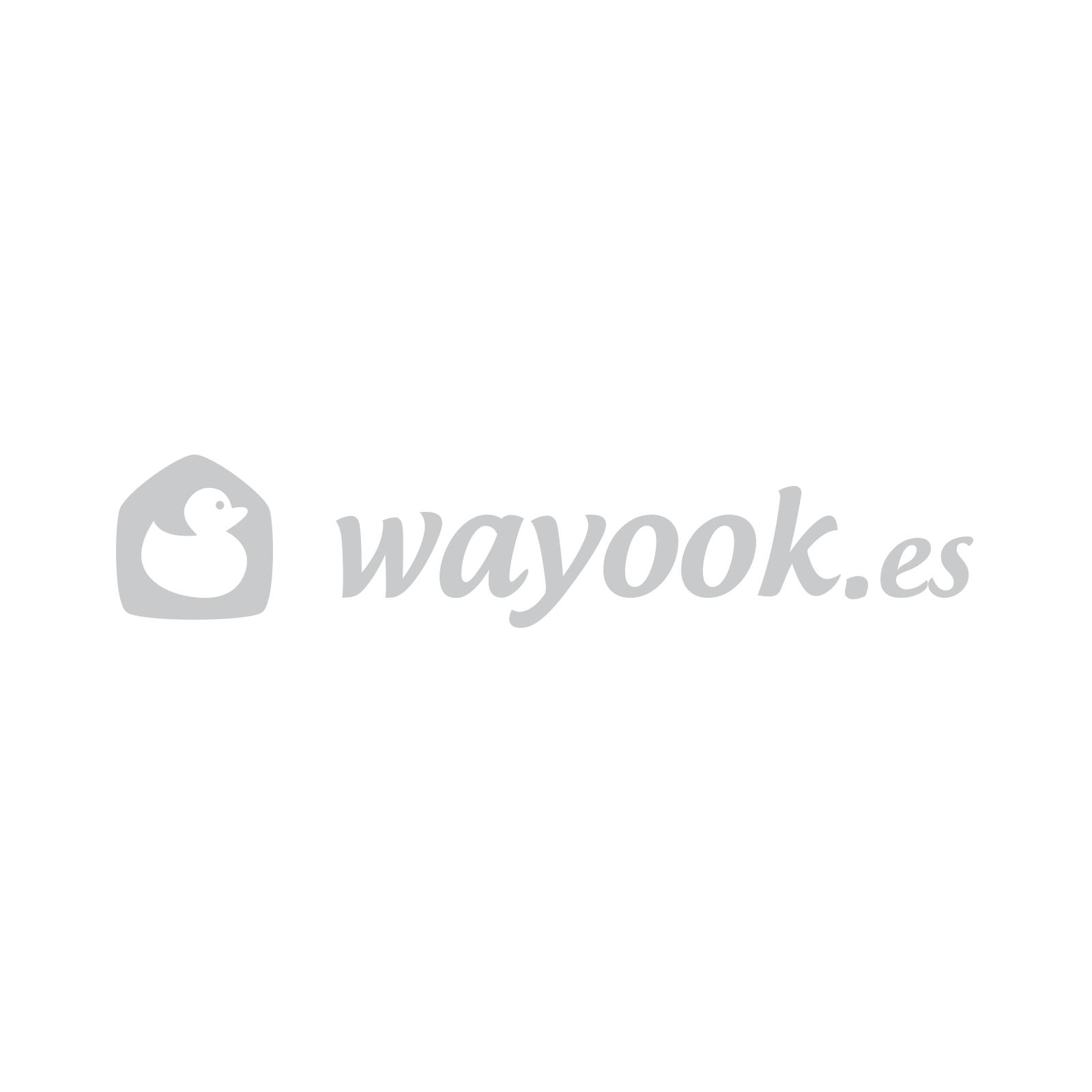 Wayyook Logo