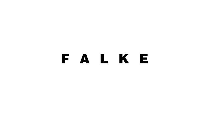 Falke.jpg