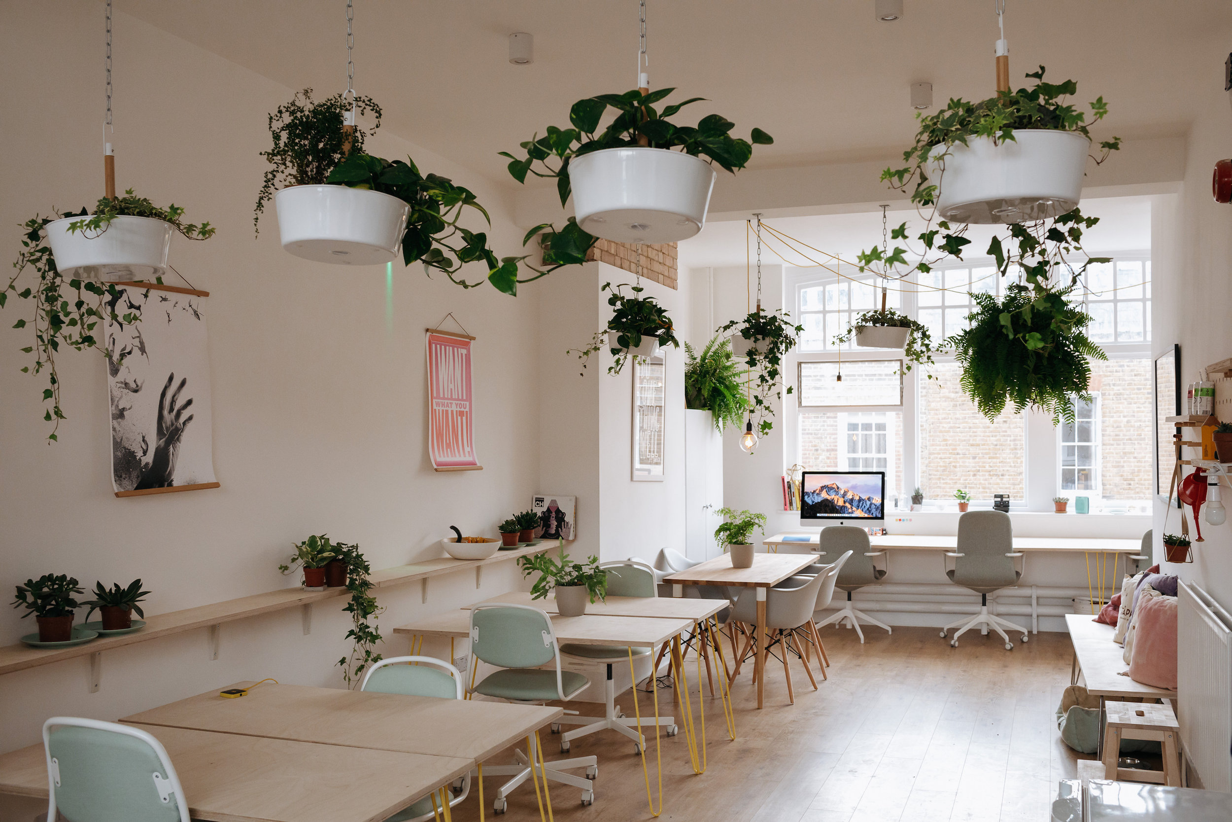 Our co-working space -