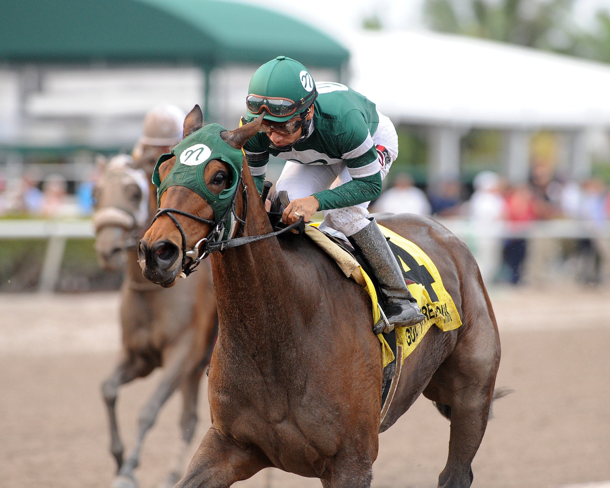 Martini Glass wins the Royal Delta, credit Kenny Martin.jpg