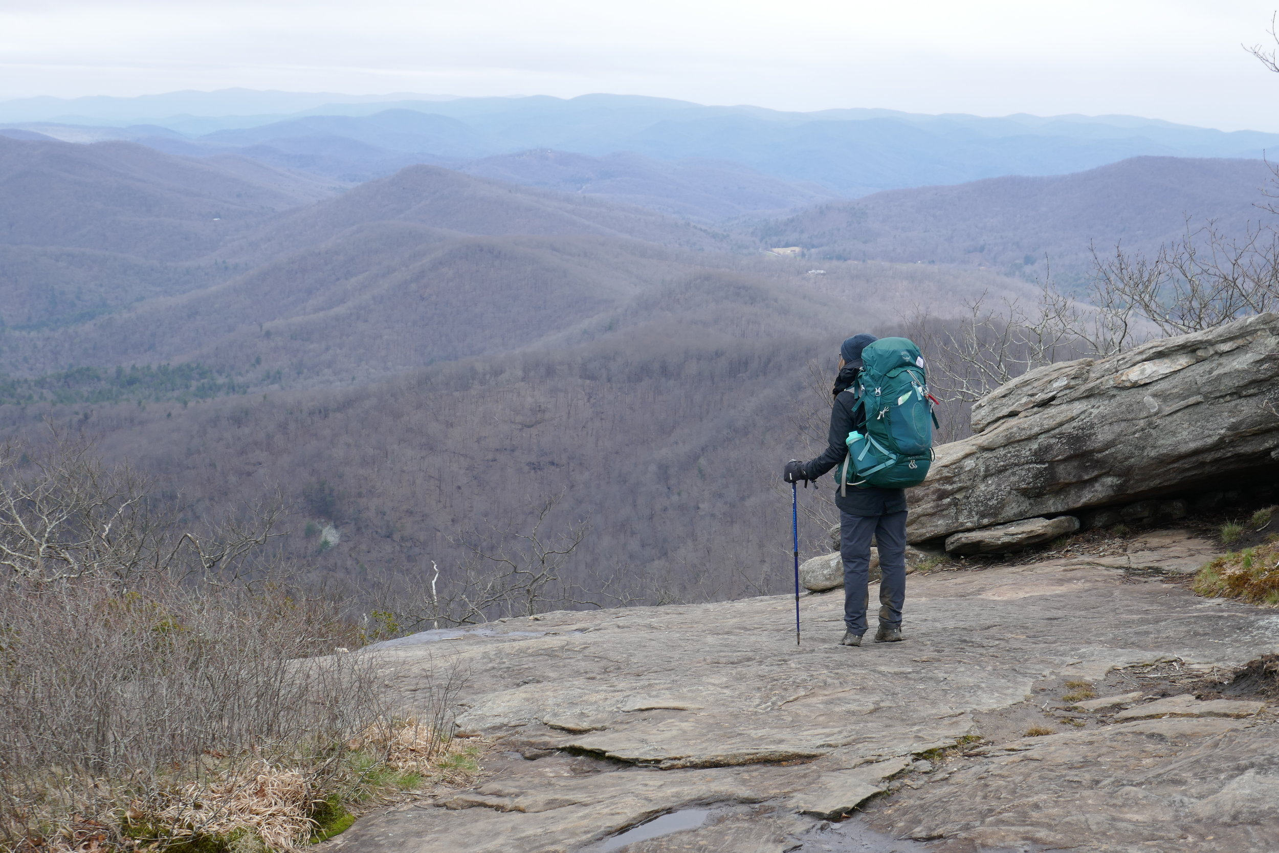 Eurohike Expedition Anti-Shock Walking Pole review