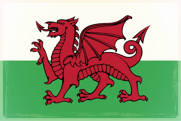 Useful Welsh words and phrases -