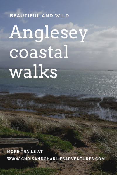 Anglesey coastal walks - Our top picks