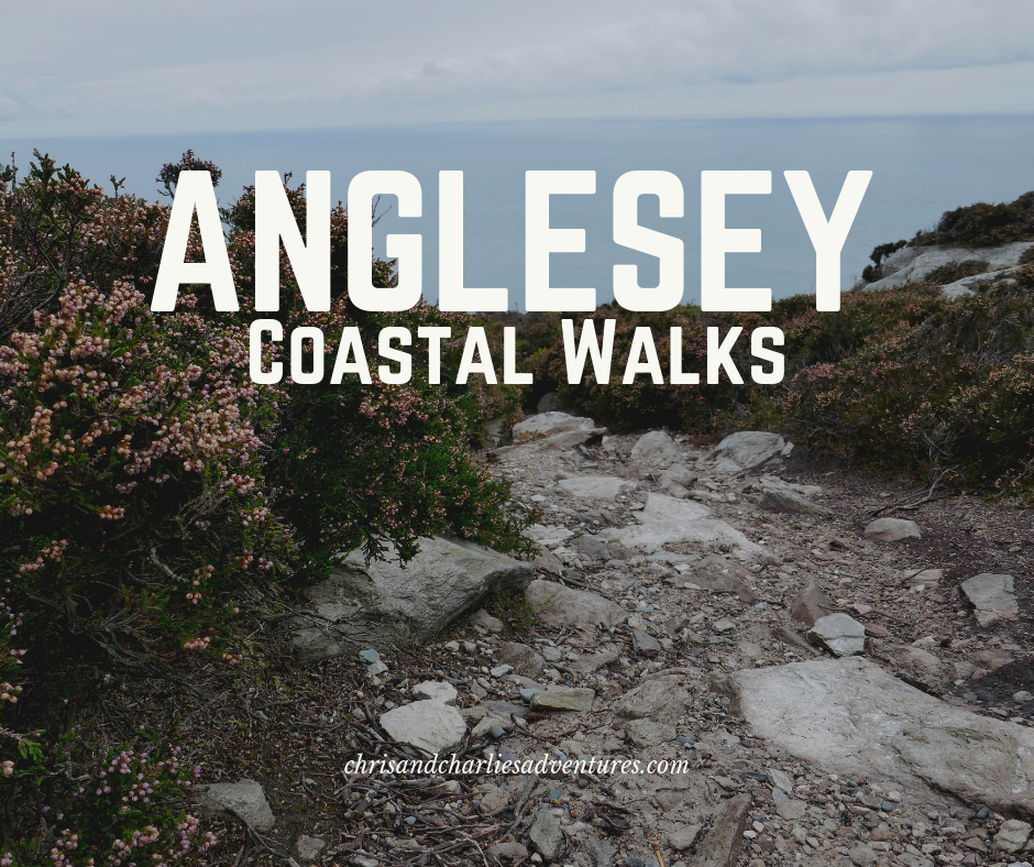 The best coastal walks on the isle of Anglesey, North Wales.