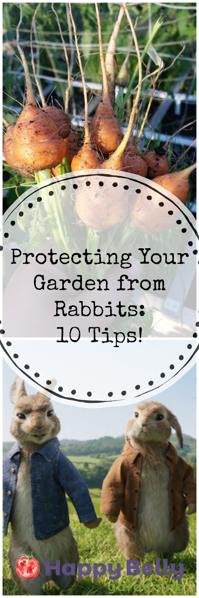 Protecting Your Garden from Rabbits - 10 tips.jpg