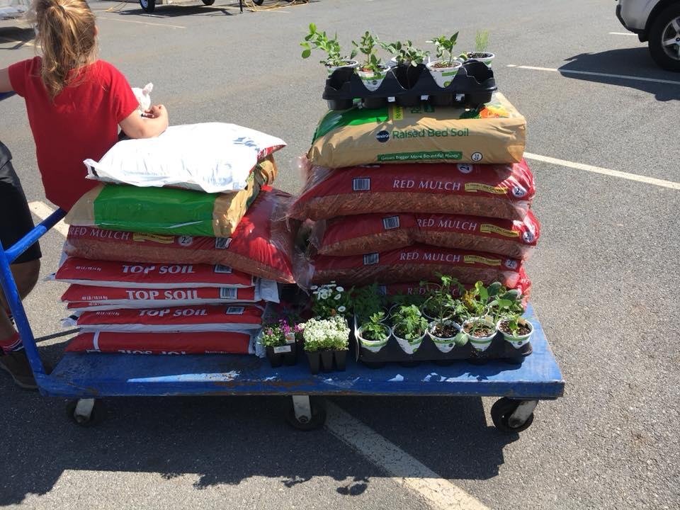 shopping for garden.jpg