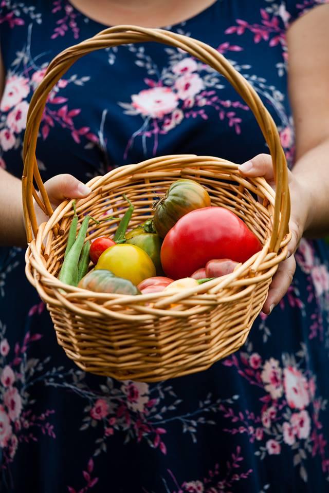 holding basket.jpg