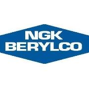 NGK Berylco