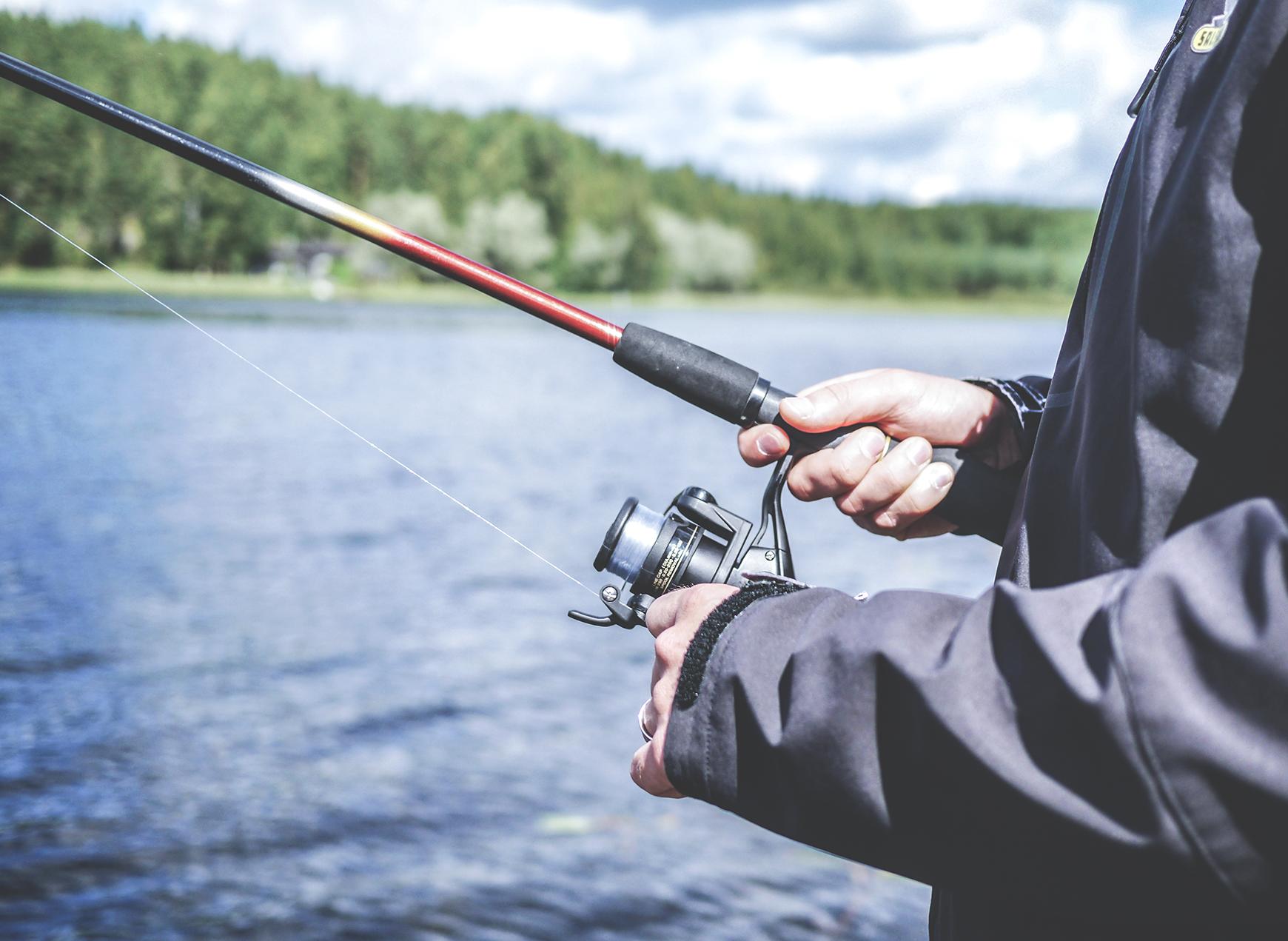 Fishing app - Branding, Logo Design, UI Design