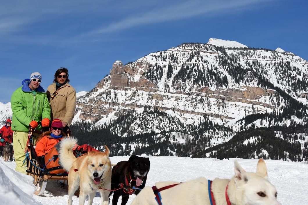 Howling through the night - Alex's journey into the world of dog mushing