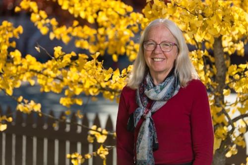 Dorothy Clarkstone Notary Public - dorothy@dclarkstone.ca