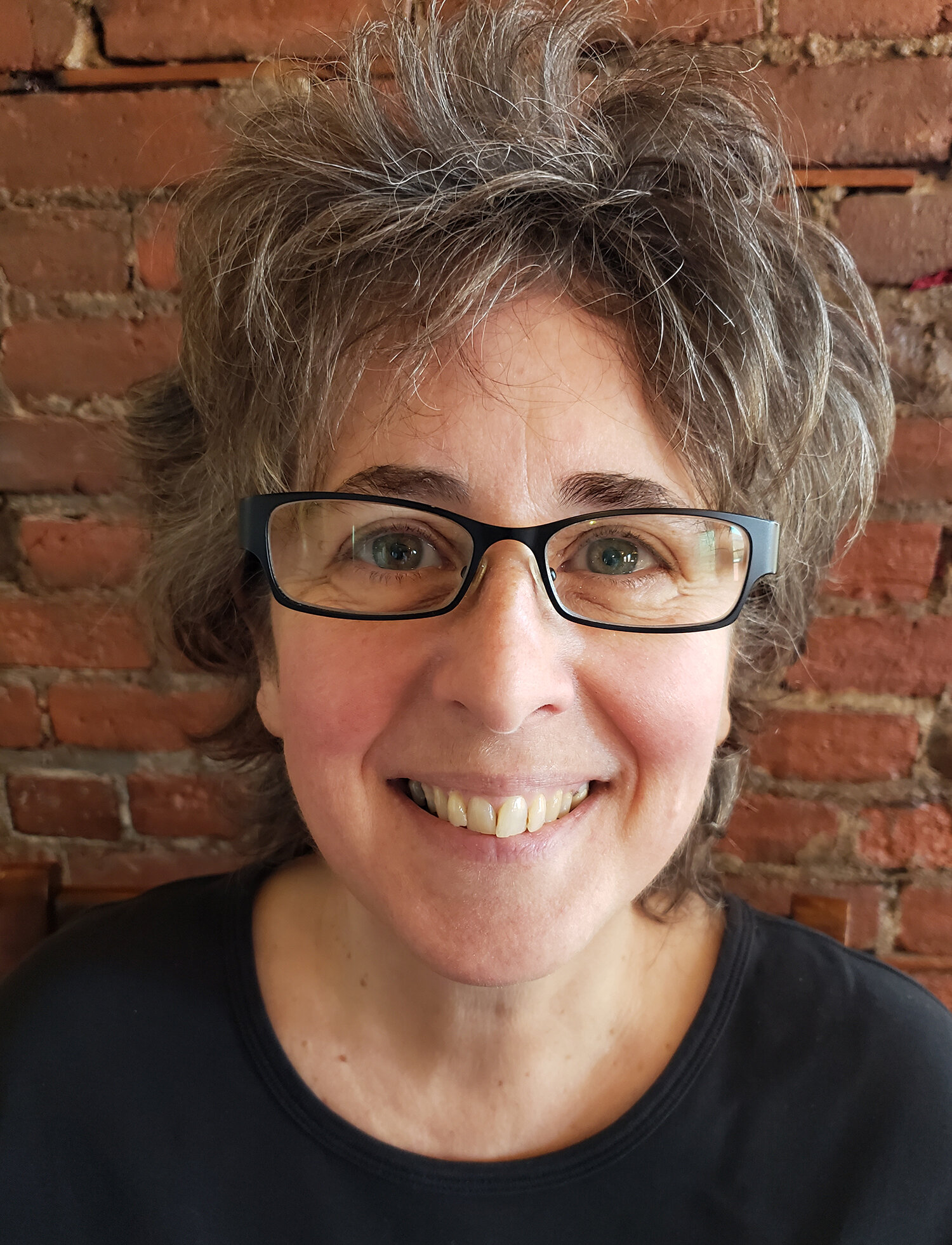 Donna Steiner - Donna Steiner's writing has been published in literary journals including The Sun, Fourth River, Radar Poetry, Under the Gum Tree, Brevity, and Stone Canoe. She teaches at the State University of New York. A chapbook, Elements, was released by Sweet Publications.