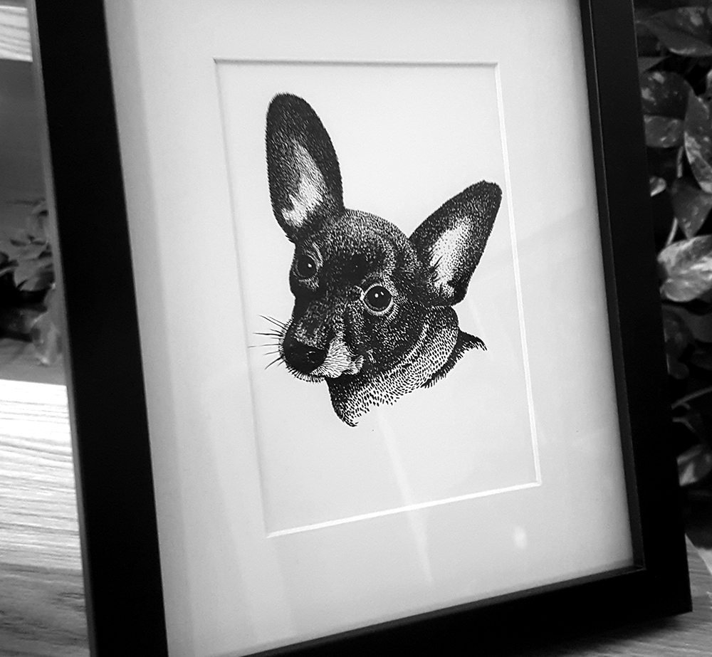 chihuahua-dog-illustration.png