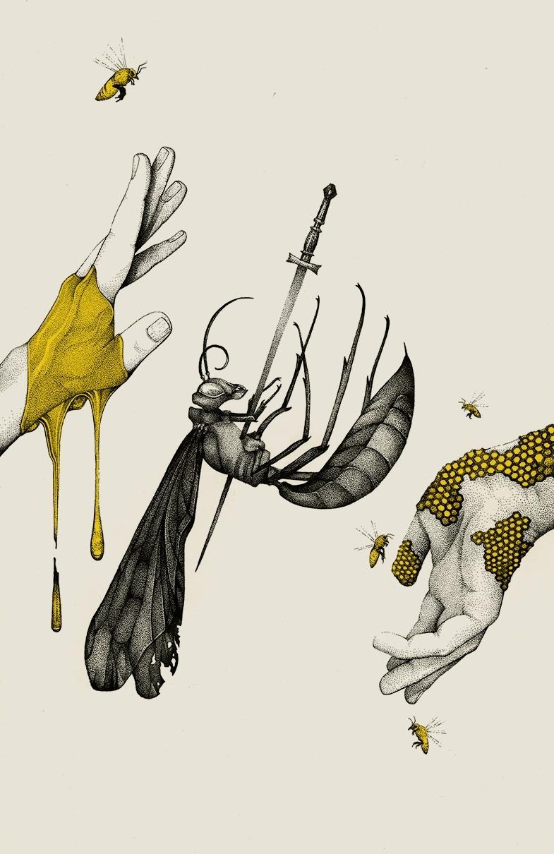 bee-honey-illustration.jpg