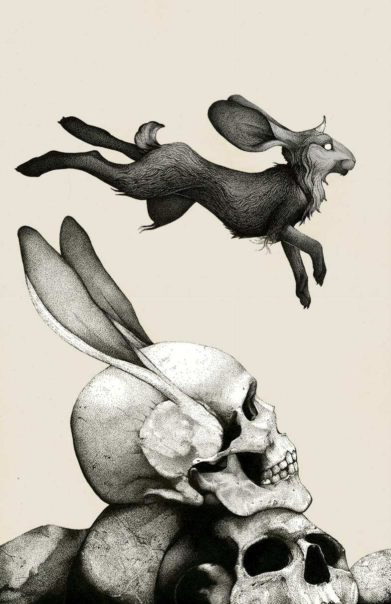 rabbit-skull-illustration.jpg