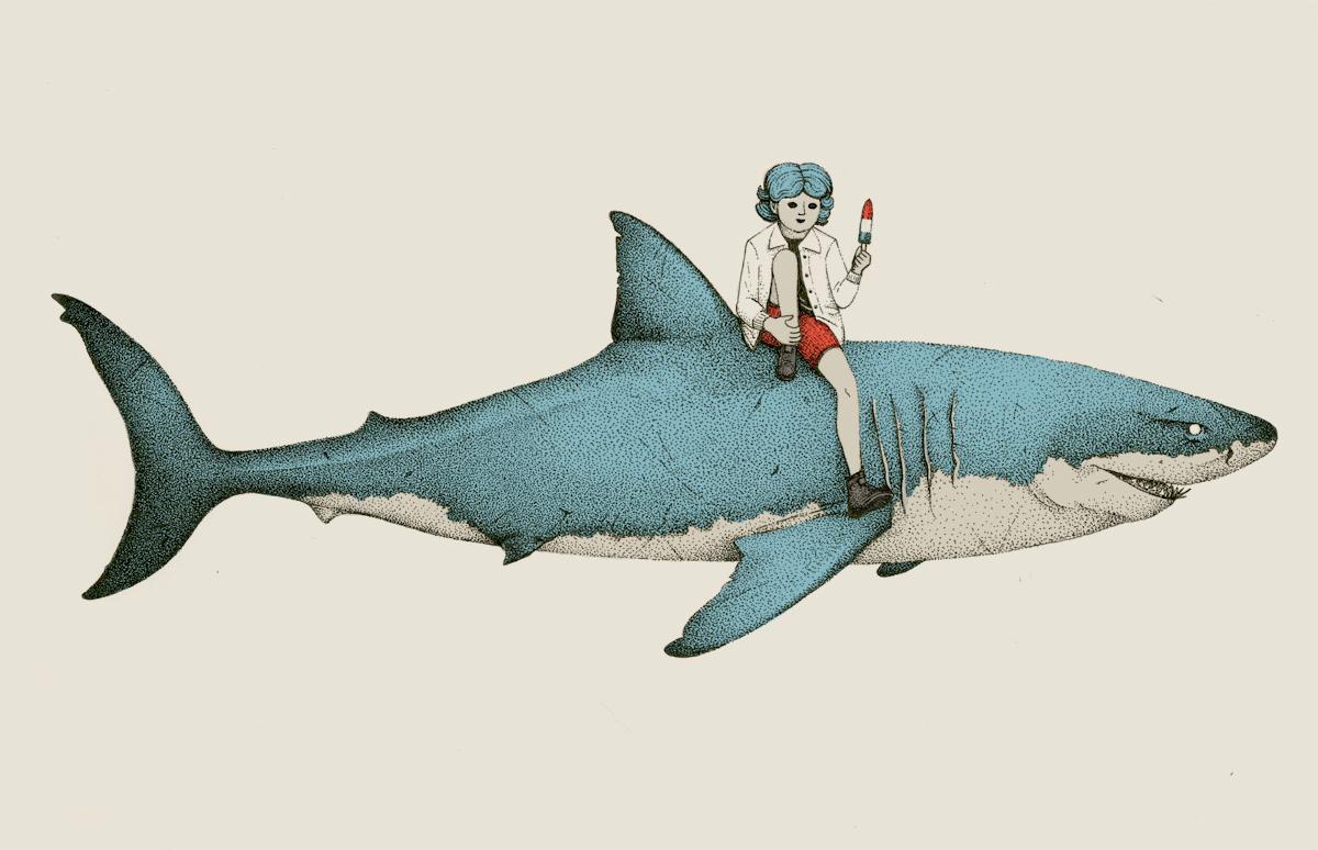 shark-summer-illustration.png