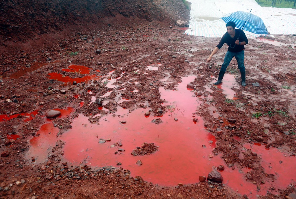 - The textile industry is the second most polluting in the world after oil.
