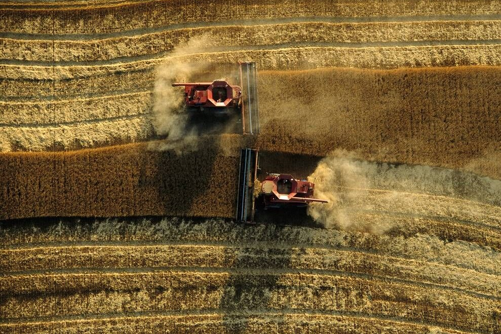 - Agriculture is the leading cause of deforestation