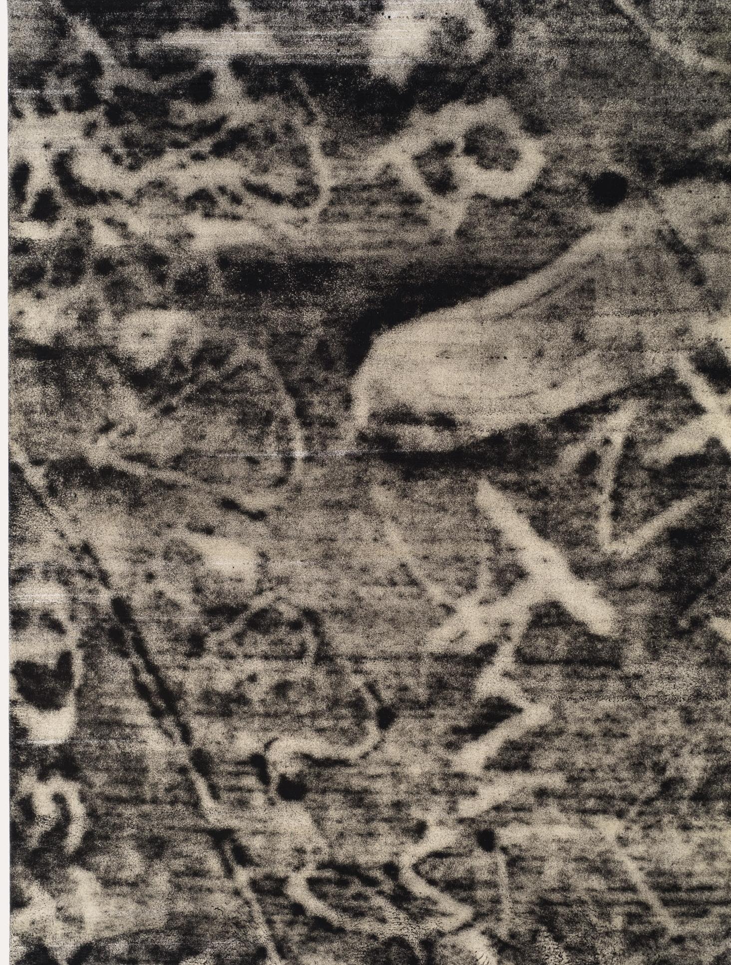 BrigitteEngler, Footstep, 2016, Ink on Paper and Wax on Canvas.jpg